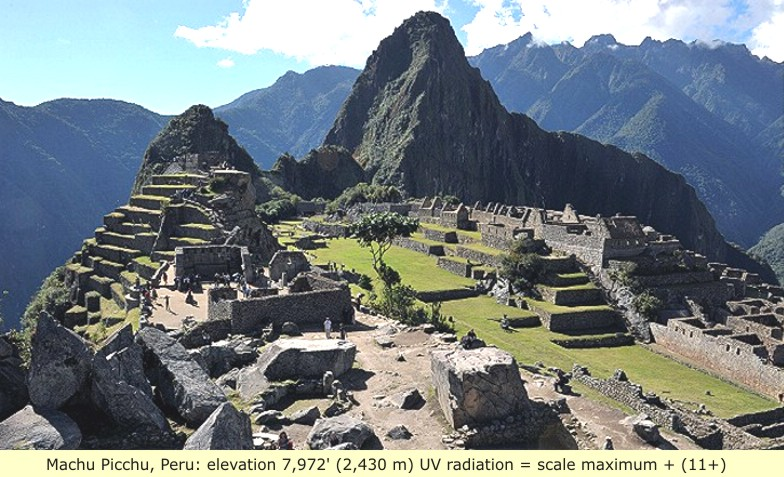 the incas and socialism essay Socialist confederation emphasizing shared societal responsibility rather than individual advancement (essays in population history) documents similar to aztecs and incas vs europeans skip carousel carousel previous carousel next.