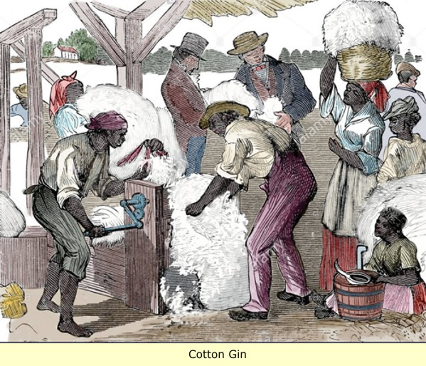 cotton gin essay The cotton gin page 1 of 4 abraham jraisat the invention of the cotton gin, created by eli whitney in 1793 altered the way of cotton picking, which quickened the process of picking and.