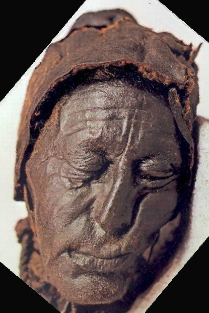 bog bodies windeby girl 'windeby girl' mummy's secret - she took a close look at the body windeby girl was likely a young man of the bog bodies provides.