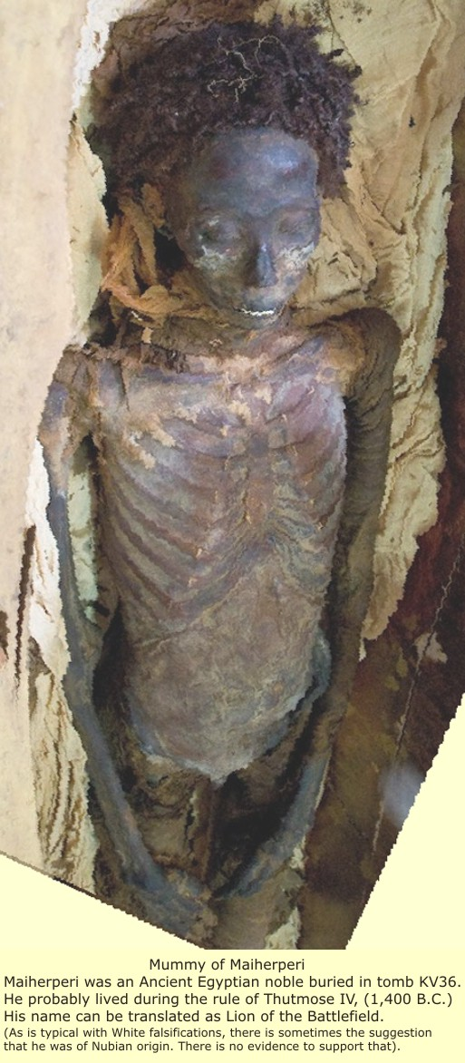 EgyptSearch Forums: The truth about Egyptian Mummies